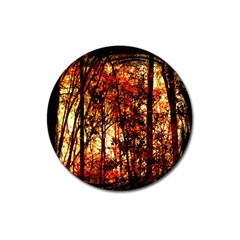 Forest Trees Abstract Magnet 3  (round) by Nexatart