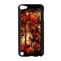 Forest Trees Abstract Apple Ipod Touch 5 Case (black) by Nexatart