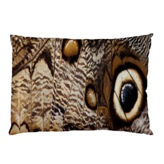 Butterfly Wing Detail Pillow Case by Nexatart