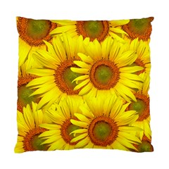 Sunflowers Background Wallpaper Pattern Standard Cushion Case (two Sides) by Nexatart