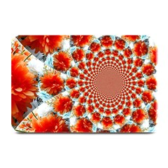 Stylish Background With Flowers Plate Mats by Nexatart