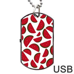 Fruit Watermelon Seamless Pattern Dog Tag Usb Flash (two Sides) by Nexatart