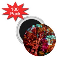 Abstract Fall Trees Saturated With Orange Pink And Turquoise 1 75  Magnets (100 Pack)