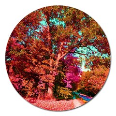 Abstract Fall Trees Saturated With Orange Pink And Turquoise Magnet 5  (round) by Nexatart