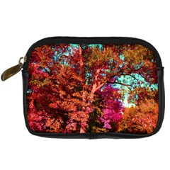 Abstract Fall Trees Saturated With Orange Pink And Turquoise Digital Camera Cases