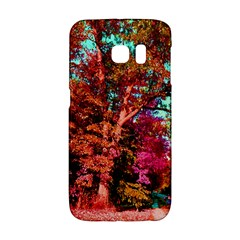 Abstract Fall Trees Saturated With Orange Pink And Turquoise Galaxy S6 Edge by Nexatart