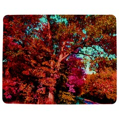 Abstract Fall Trees Saturated With Orange Pink And Turquoise Jigsaw Puzzle Photo Stand (rectangular) by Nexatart