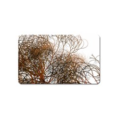 Digitally Painted Colourful Winter Branches Illustration Magnet (name Card) by Nexatart