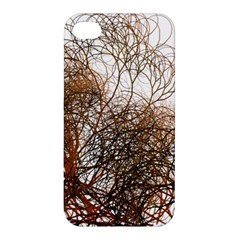 Digitally Painted Colourful Winter Branches Illustration Apple Iphone 4/4s Premium Hardshell Case