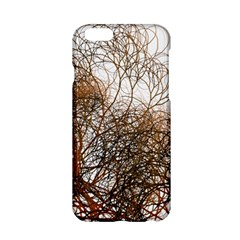 Digitally Painted Colourful Winter Branches Illustration Apple Iphone 6/6s Hardshell Case by Nexatart