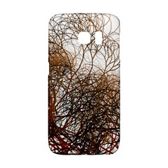 Digitally Painted Colourful Winter Branches Illustration Galaxy S6 Edge by Nexatart