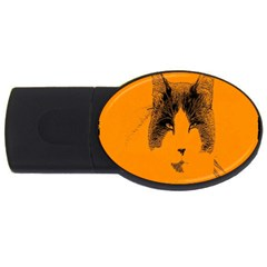 Cat Graphic Art Usb Flash Drive Oval (4 Gb) by Nexatart