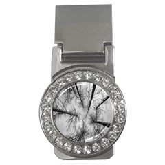 Trees Without Leaves Money Clips (cz)  by Nexatart