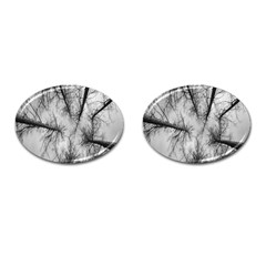 Trees Without Leaves Cufflinks (oval) by Nexatart
