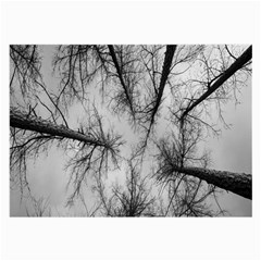 Trees Without Leaves Large Glasses Cloth (2 Side) by Nexatart