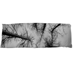 Trees Without Leaves Body Pillow Case Dakimakura (two Sides) by Nexatart