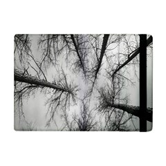 Trees Without Leaves Ipad Mini 2 Flip Cases by Nexatart