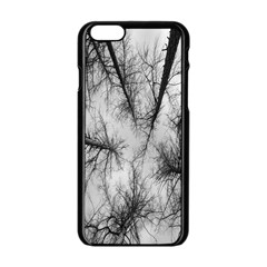 Trees Without Leaves Apple Iphone 6/6s Black Enamel Case by Nexatart