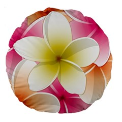 Frangipani Flower Floral White Pink Yellow Large 18  Premium Round Cushions by Mariart