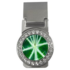 Green Leaf Macro Detail Money Clips (cz)  by Nexatart