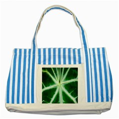 Green Leaf Macro Detail Striped Blue Tote Bag by Nexatart