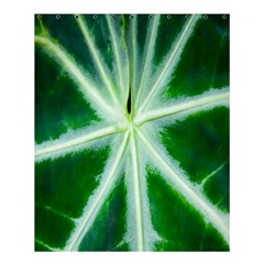 Green Leaf Macro Detail Shower Curtain 60  X 72  (medium)  by Nexatart