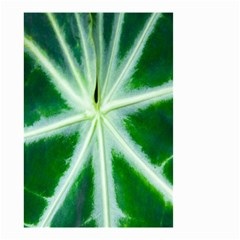 Green Leaf Macro Detail Small Garden Flag (two Sides) by Nexatart