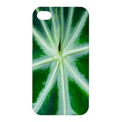 Green Leaf Macro Detail Apple Iphone 4/4s Premium Hardshell Case