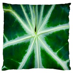 Green Leaf Macro Detail Large Flano Cushion Case (one Side) by Nexatart