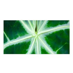 Green Leaf Macro Detail Satin Shawl by Nexatart