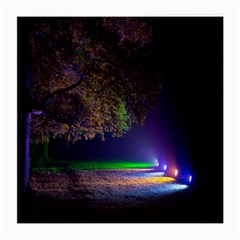 Illuminated Trees At Night Medium Glasses Cloth (2 Side) by Nexatart