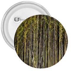 Bamboo Trees Background 3  Buttons by Nexatart