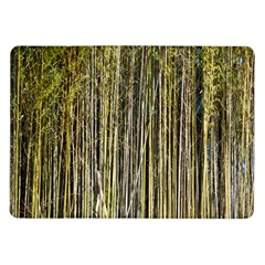Bamboo Trees Background Samsung Galaxy Tab 10 1  P7500 Flip Case