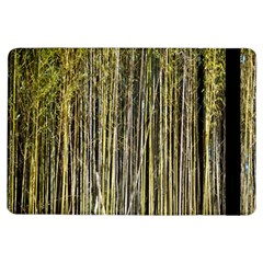 Bamboo Trees Background Ipad Air Flip