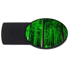 Spooky Forest With Illuminated Trees Usb Flash Drive Oval (4 Gb) by Nexatart