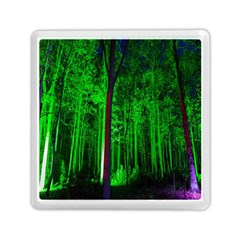Spooky Forest With Illuminated Trees Memory Card Reader (square)  by Nexatart