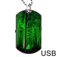 Spooky Forest With Illuminated Trees Dog Tag Usb Flash (two Sides) by Nexatart