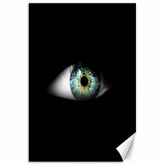 Eye On The Black Background Canvas 20  X 30   by Nexatart