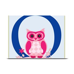 Alphabet Letter O With Owl Illustration Ideal For Teaching Kids Plate Mats
