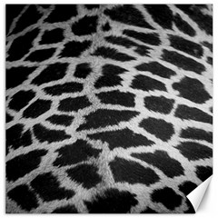Black And White Giraffe Skin Pattern Canvas 16  X 16   by Nexatart
