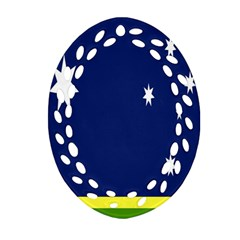 Flag Star Blue Green Yellow Oval Filigree Ornament (two Sides) by Mariart