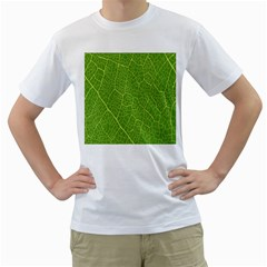 Green Leaf Line Men s T-shirt (white) (two Sided) by Mariart