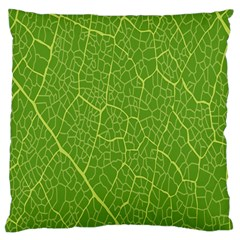 Green Leaf Line Large Cushion Case (two Sides) by Mariart