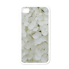Hydrangea Flowers Blossom White Floral Photography Elegant Bridal Chic  Apple Iphone 4 Case (white) by yoursparklingshop