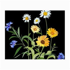 Flowers Of The Field Small Glasses Cloth (2 Side) by Nexatart