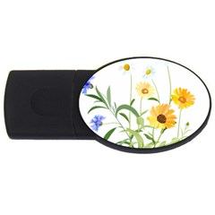 Flowers Flower Of The Field Usb Flash Drive Oval (2 Gb) by Nexatart