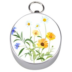 Flowers Flower Of The Field Silver Compasses by Nexatart