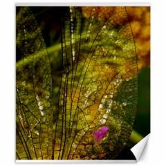 Dragonfly Dragonfly Wing Insect Canvas 8  X 10  by Nexatart