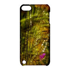 Dragonfly Dragonfly Wing Insect Apple Ipod Touch 5 Hardshell Case With Stand by Nexatart