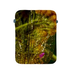 Dragonfly Dragonfly Wing Insect Apple Ipad 2/3/4 Protective Soft Cases by Nexatart
